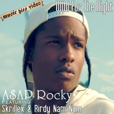 A$AP Rocky feat. Skrillex & Birdy Nam Nam - Wild For The Nigh